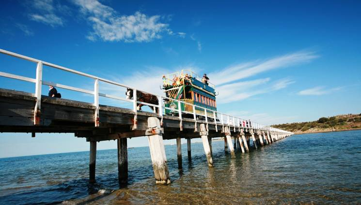 1124_1_horse_tram_hero_image_medium_victor_harbor.jpg
