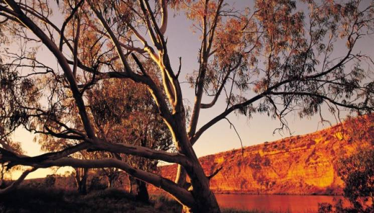 1495_5_murraylands_big_bend_at_dusk_0007499-364-c.jpg
