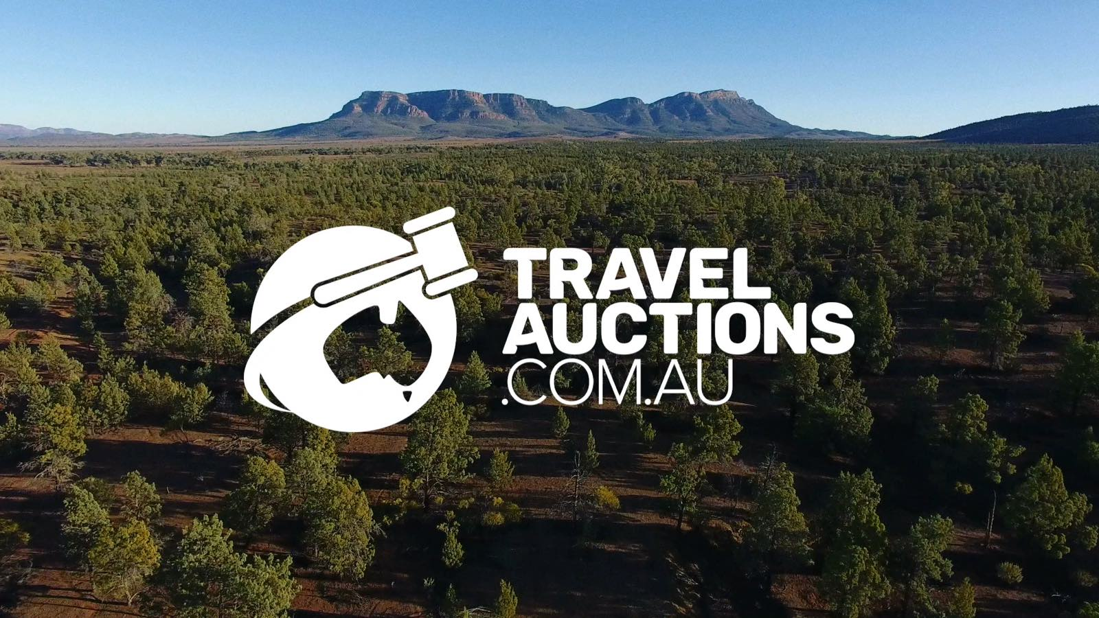 Travel Auctions